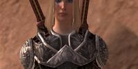 Nightingale's Lamellar Armor