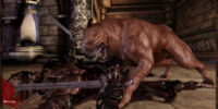 Codex entry: Dog