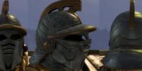 Standard Bearer's Helm