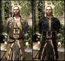 DA2 Renegade's Coat - Before and After Comparison - Anders companion armor
