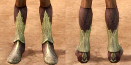 Ancient elven boots dao