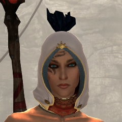 File:Dusty Traveler's Hood.png