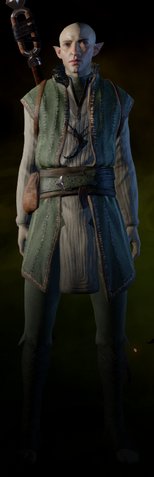 File:Solas Apprentice Coat.png
