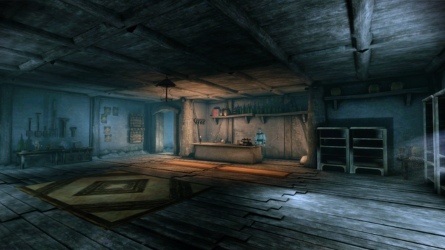 File:Village Store - Interior II.png