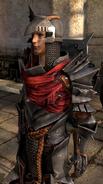 MantleOfTheChampion-Warrior