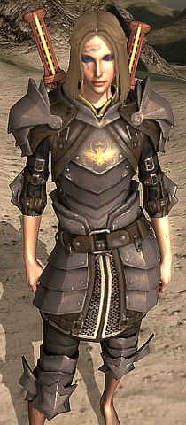 File:Commisioned Plate Armor.png