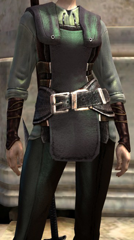 File:Free Adept Robes srnshot female.png