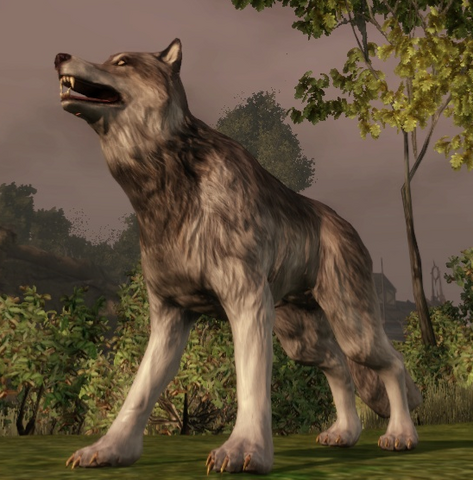 File:Creature-Wolf.png