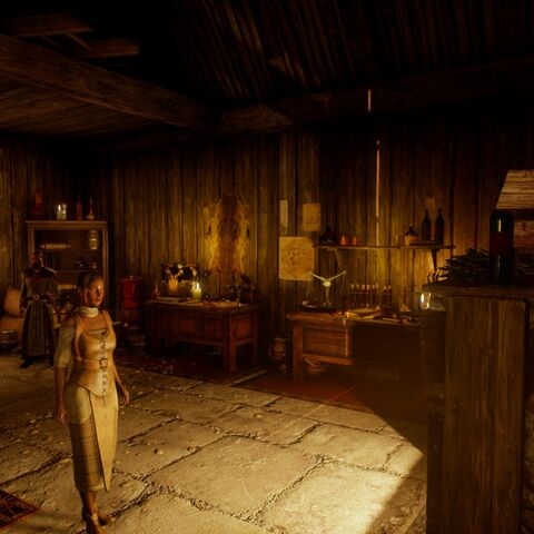 Inside Haven's apothecary