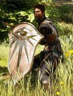 Cassandra Shield