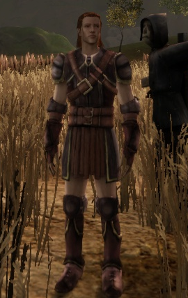 File:Dalish Leather armor set.png