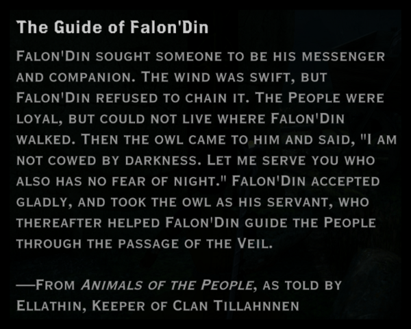 File:5 the guide of falon'din.png