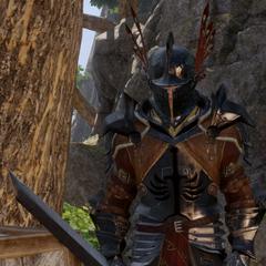 Templar Knight in <i>Dragon Age: Inquisition</i>