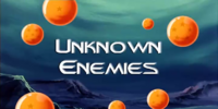 Unknown Enemies