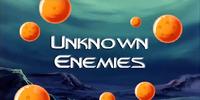 Unknown Enemies