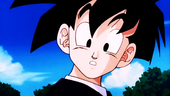 File:Gohan (AfterCellFight).png
