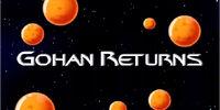 Gohan Returns