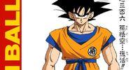 Son Goku... Resurrected!!