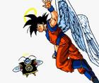 AngelGoku(ISGD)