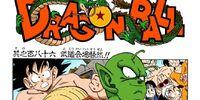 Panic at the Tenkaichi Budokai!