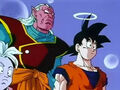 Dbz235 - (by dbzf.ten.lt) 20120324-21245999
