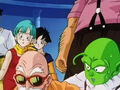 Dbz245(for dbzf.ten.lt) 20120418-17202996