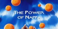 The Power of Nappa