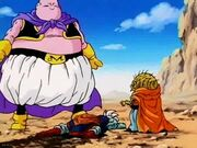 Babidi and buu