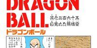Son Goku Awakens
