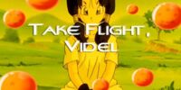 Take Flight, Videl