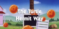 The Turtle Hermit Way