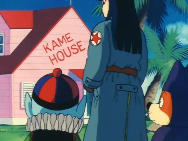 File:The Pilaf gang at Kame House.jpg