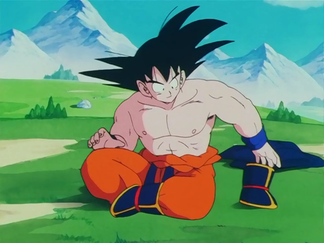 File:GokuWeightedClothing.png