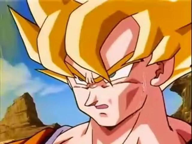 File:Goku285.JPG