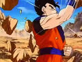 Dbz249(for dbzf.ten.lt) 20120505-11563524