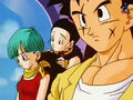 DBZ - 224 -(by dbzf.ten.lt) 20120303-15111708