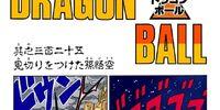 Son Goku Quits