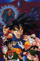 Dragon ball025