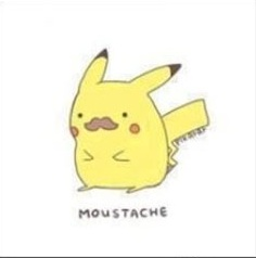 File:Mustachachu.jpg