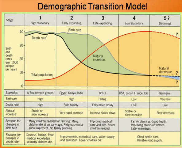 Demographic Transition | DragonflyIssuesInEvolution13 Wiki ...