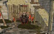 Mechanic Dragon Wild