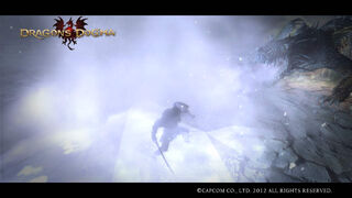 Dragon's Dogma Screenshot 137