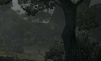 Witchwoodwiki
