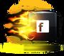 DDFacebookIcon