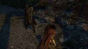 Skeleton Lord Encounter