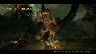 Dragon's Dogma Screenshot 24