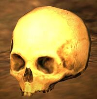 Dragon's Dogma - Skull.jpg