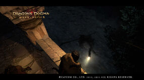 Dragon's Dogma Dark Arisen Screenshot 6-0