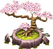 BonsaiBlossom