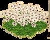 WhimsyBlossoms